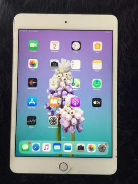 Vendo iPad Mini4 64gb en Perfecto Estado