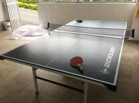 Mesa Ping Pong Profesional