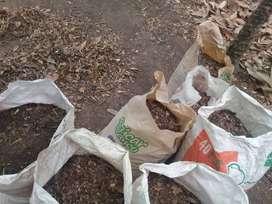 se vende tierra para abono de cacao.cafe,aguacate.etc