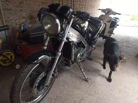 Kawasaki victor 150
