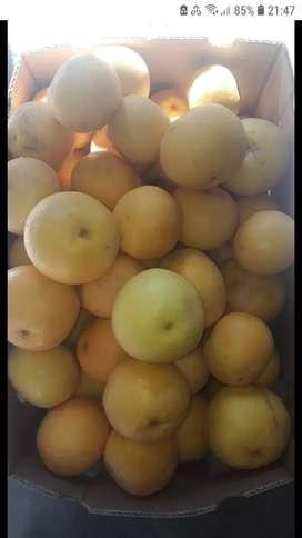 Vendo Pomelos