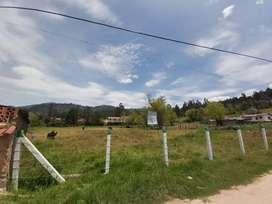 Lote vereda la Trinidad (Duitama - Boyaca )