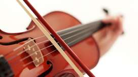 Clases de Violin Personalizadas