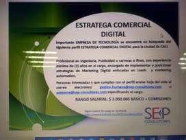 ESTRATEGA COMERCIAL DIGITAL