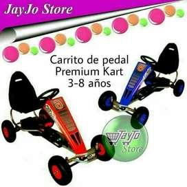 Carro de Pedal Premium Kart