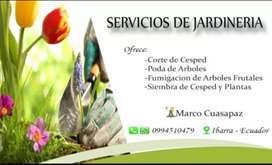 Corte y Mantenimiento de Césped y Jardineria