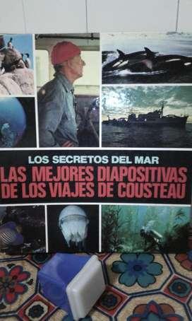 Diapositivas Los Secretos Del Mar Jacques Cousteau