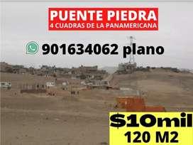 Proyecto Ecovid-Puente Piedra