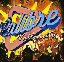 Grupo Vallenato