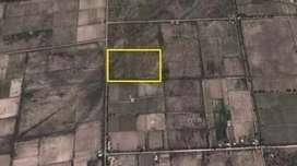 Finca de 10 hectareas en San Rafael Mendoza