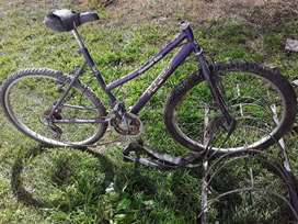 Bicicleta kent  (mountain bike)