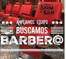 Se busca barbero o Lady barber