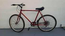 Bicicleta Tomaselli - Todo Terreno