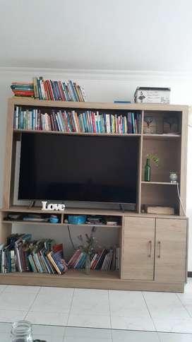 Vendo Mueble-Biblioteca para TV.