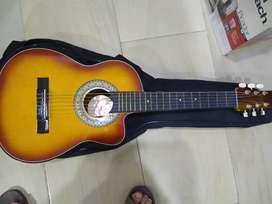 Guitarra Do Art