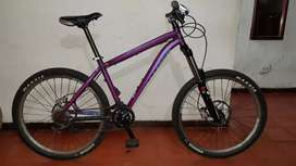 Bicicleta specialized para downhill