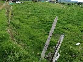 Se vende 4 cuadras en  el municipio de la unión vereda la madera
