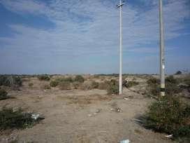Se vende terreno de 4,000 m2 en Jíbito. Sullana. Piura.