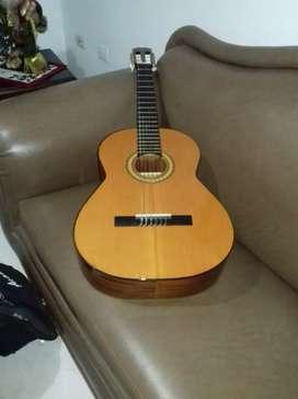 Se Vende Guitarra