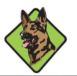 Guarderia Hotel canino