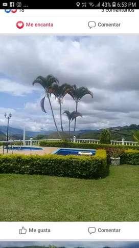 Alquiler finca Villa Emmanuel km 37 via al queremal
