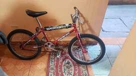 Vendo bicicleta Rin 20