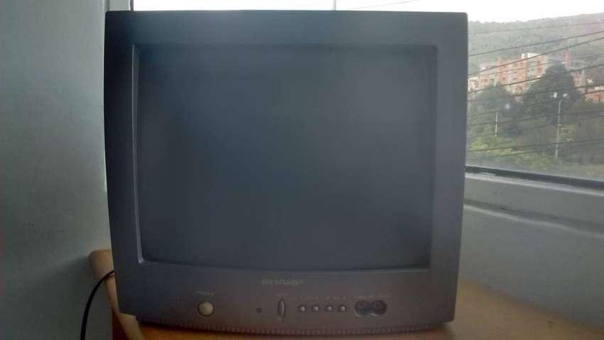 Televisor SHARP. Modelo 14MR10W - Oportunidad