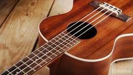 Clases de ukelele, violín, viola y cello a domicilio y virtuales