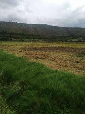 Vendo terreno en Santiago del Rey, vía Urcuquí