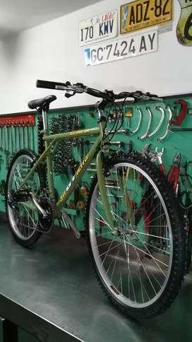 Bicicleta mtb gt allterra