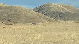 Se vende terreno rural de 20 hectareas