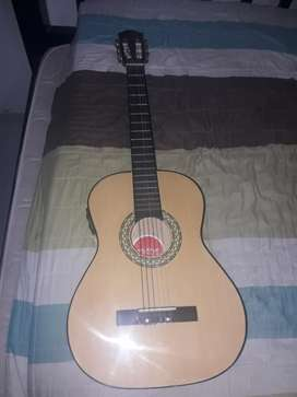 Guitarra Miche