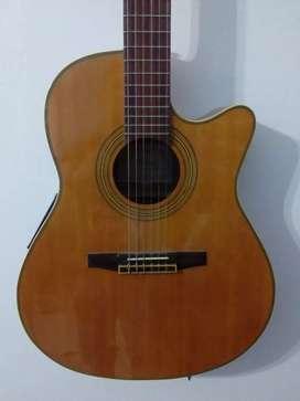 Guitarra Ibanez guitarra de colección