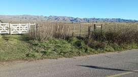 en venta 4 hectareas en Estancia Grande