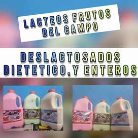 Yogurt frutos el campo
