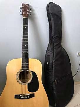 Guitarra Acústica Texas Modelo Dg-100e4 Con Funda