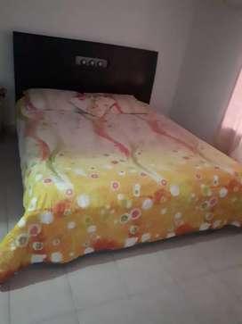 Vendo cama de 1.60