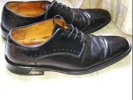 Zapatos Domenico Formal Talla 39