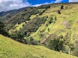 En Venta Finca de 3.6 hectareas muy cerca de Loja