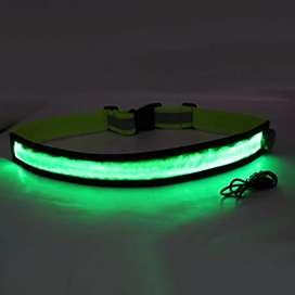 Cinturon LED