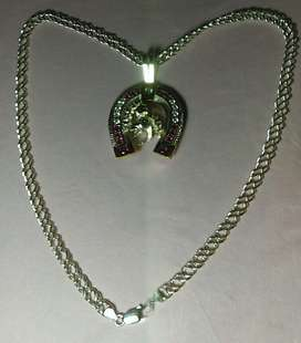 vendo o cambio bonita cadena con dije figura HERRADURA., en plata .,