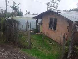 via  cachipay -sipacon
