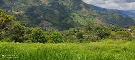 Venta de Lote supata cundinamarca - Motivó viaje