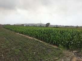 Vendo terreno en supe pueblo