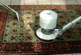 Lavado Limpieza de Carpetas, Retiro y entrega a domicilio