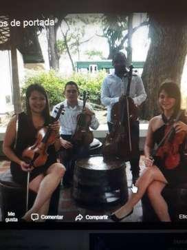 Musica para todo tipo de eventos y clases particular de violin.