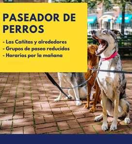 Paseador de perros - Las Cañitas y alrededores / Belgrano / Palermo.