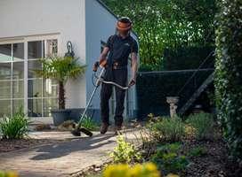 Jardinero con Experiencia Comprobable