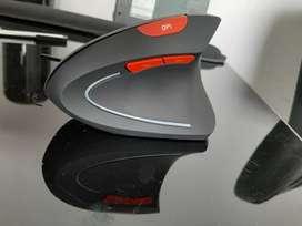 Mouse inalambrico ergonomico