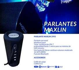 PARLANTE MAXLIN 2993